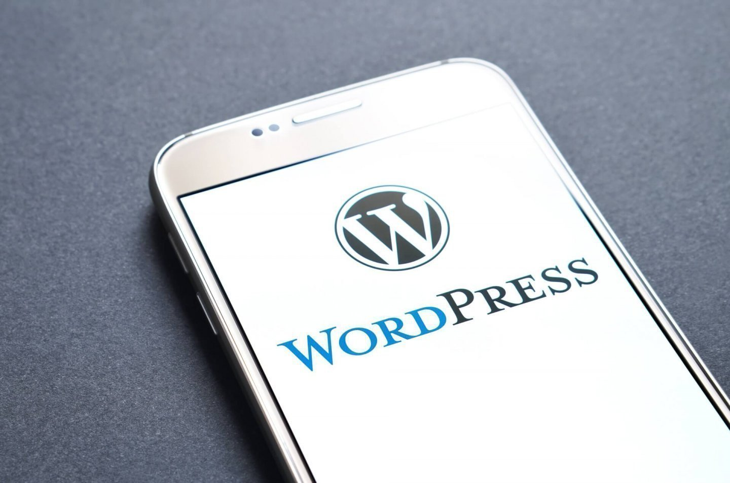 Accessible Wordpress themes for WCAG 2.1 websites